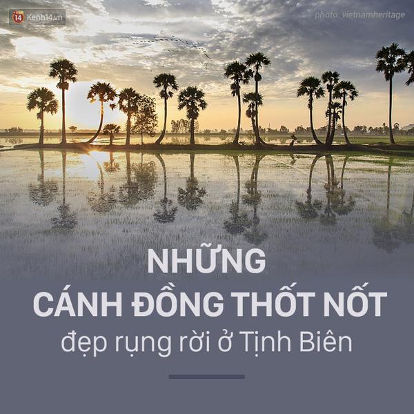 nhung-canh-dong-thot-not-dep-rung-roi-o-tinh-bien-an-giang